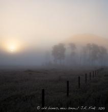 fog.2