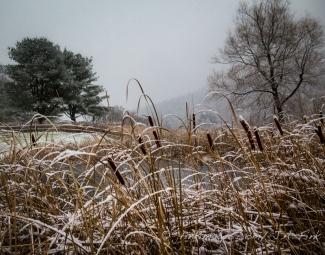 morning snows, Karme Choling Vermont