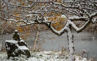 snow, Kare Choling Vermont